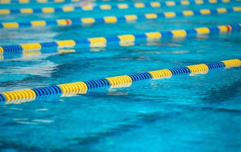 'Just keep swimming': junior qualifies for regionals